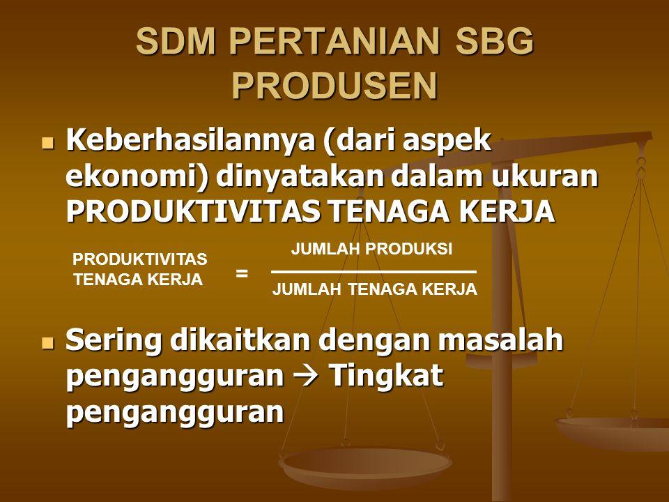 SDM PERTANIAN SBG PRODUSEN Keberhasilannya (dari aspek ekonomi) dinyatakan dalam ukuran PRODUKTIVITAS TENAGA KERJA Keberhasilannya (dari aspek ekonomi