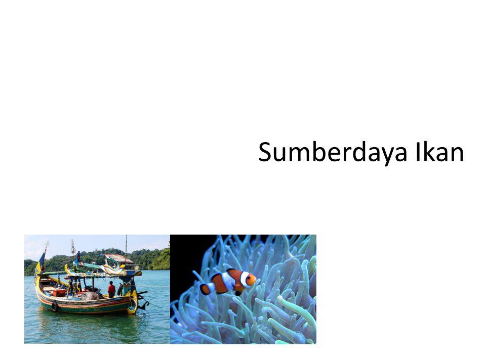 Ikan Adalah Segala jenis organisme yang seluruh atau sebagian dari siklus hidupnya berada di dalam lingkungan perairan Berdasarkan data archeologi ikan ada sejak 90.000 tahun yang lalu Manusia kuno cenderung hidup di sekitar sungai.