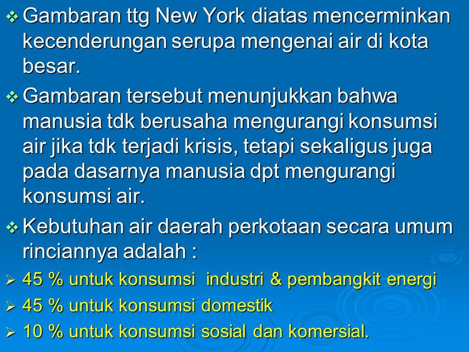  Gambaran ttg New York diatas mencerminkan kecenderungan serupa mengenai air di kota besar.  Gambaran tersebut menunjukkan bahwa manusia tdk berusah