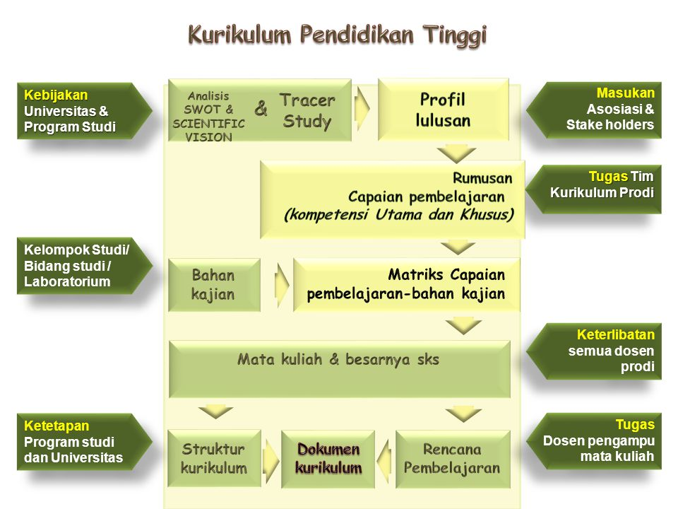 Masukan Asosiasi & Stake holders Kebijakan Universitas & Program Studi Tugas Tim Kurikulum Prodi Kelompok Studi/ Bidang studi / Laboratorium Keterliba