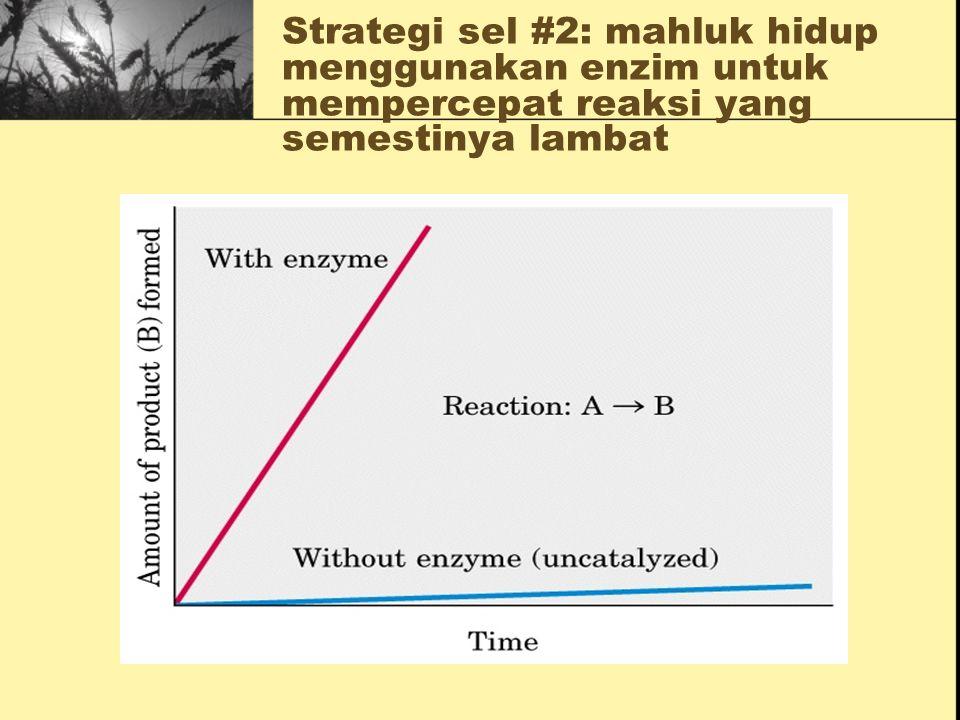 Strategi sel #1: mahluk hidup menggunakan sistem reaksi kimia berpasangan untuk mendorong reaksi yang sulit terjadi