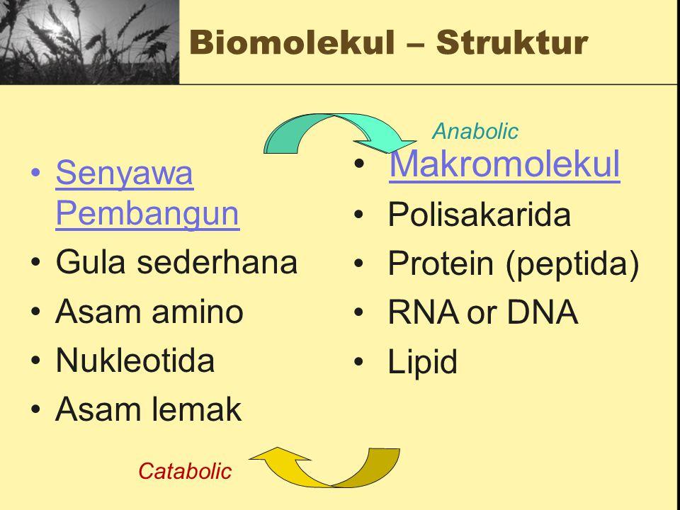 Transformasi Biokimia dapat dikelompokkan ke dalam 5 kelompok besar Reaksi pemindahan Group Reaksi Oksidasi-reduksi Penyusunan kembali Rearrangements
