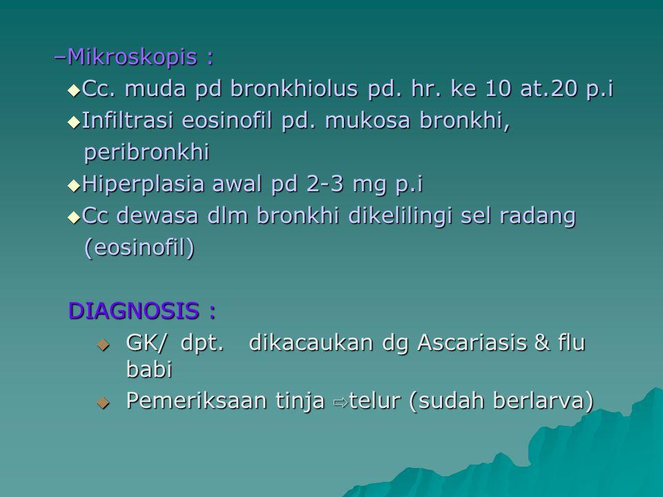 –Mikroskopis :  Cc. muda pd bronkhiolus pd. hr. ke 10 at.20 p.i  Infiltrasi eosinofil pd. mukosa bronkhi, peribronkhi peribronkhi  Hiperplasia awal