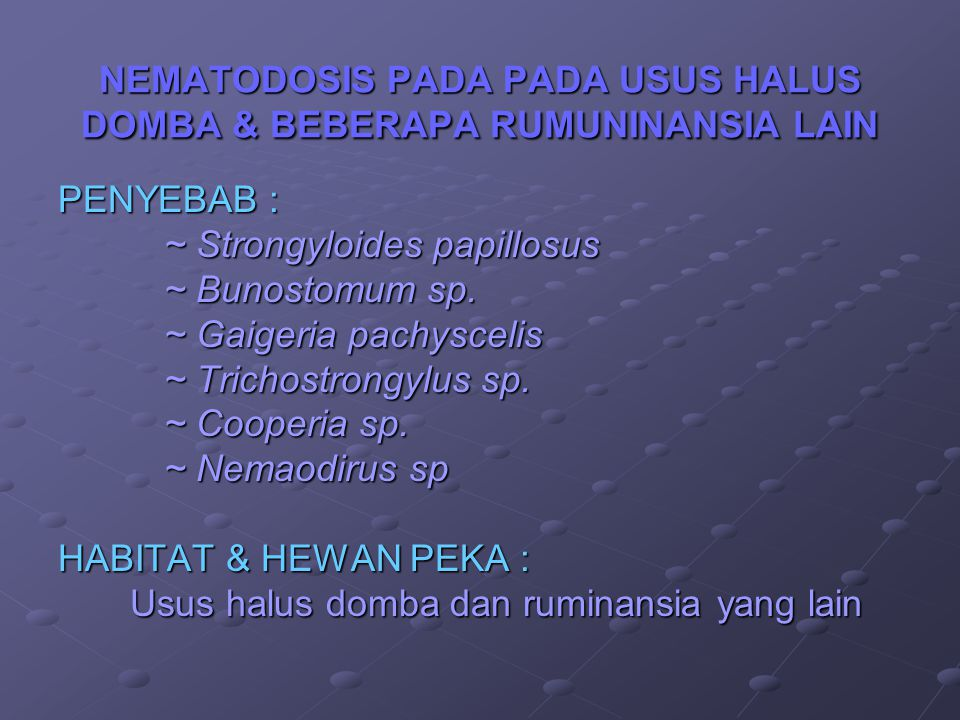 NEMATODOSIS PADA PADA USUS HALUS DOMBA & BEBERAPA RUMUNINANSIA LAIN PENYEBAB : ~ Strongyloides papillosus ~ Strongyloides papillosus ~ Bunostomum sp.