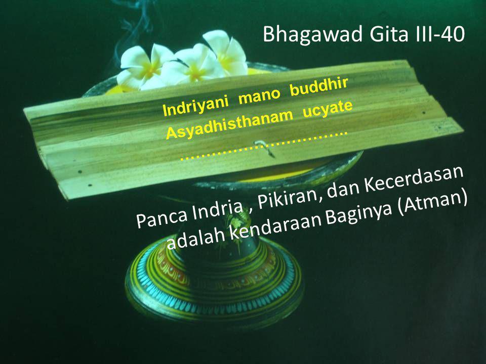 Bhagawad Gita III-40 Indriyani mano buddhir Asyadhisthanam ucyate …………………………..