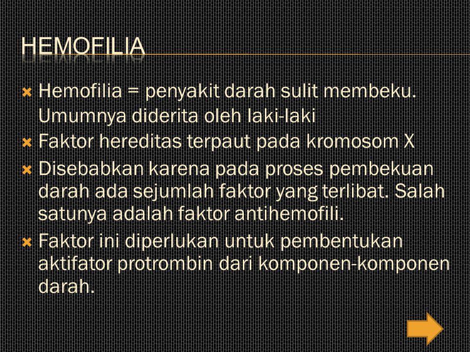  Hemofilia = penyakit darah sulit membeku.