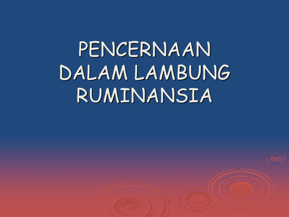 PENCERNAAN DALAM LAMBUNG RUMINANSIA