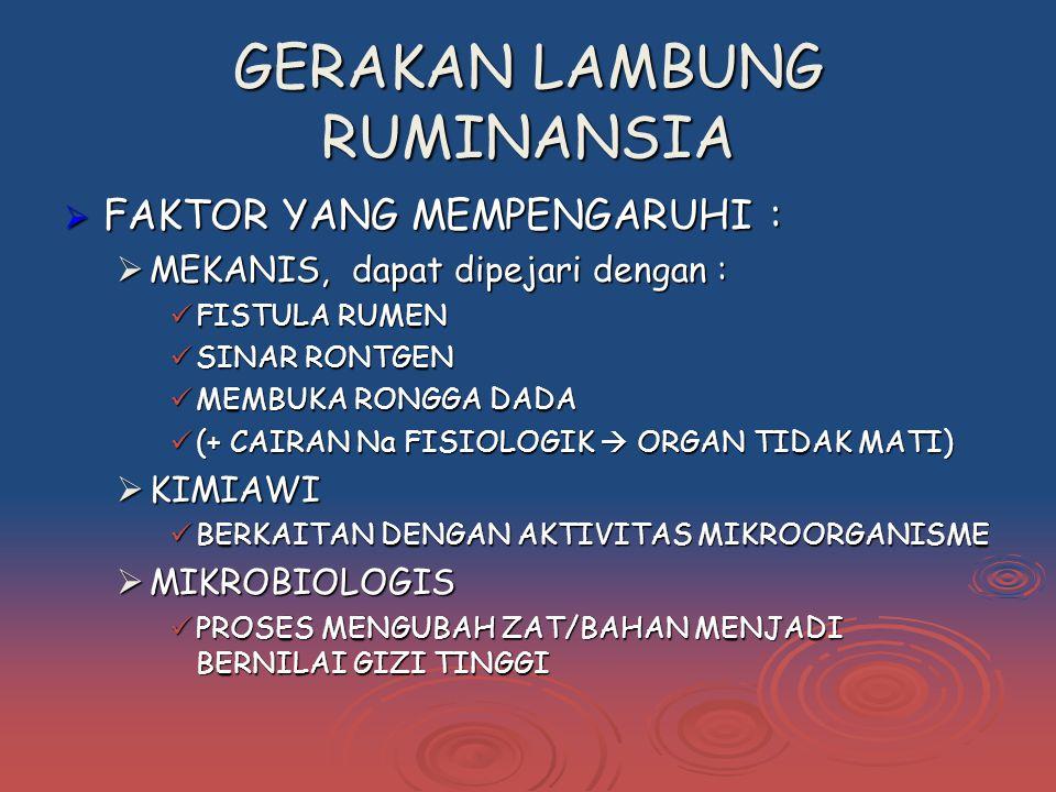 GERAKAN LAMBUNG RUMINANSIA  FAKTOR YANG MEMPENGARUHI :  MEKANIS, dapat dipejari dengan : FISTULA RUMEN FISTULA RUMEN SINAR RONTGEN SINAR RONTGEN MEMBUKA RONGGA DADA MEMBUKA RONGGA DADA (+ CAIRAN Na FISIOLOGIK  ORGAN TIDAK MATI) (+ CAIRAN Na FISIOLOGIK  ORGAN TIDAK MATI)  KIMIAWI BERKAITAN DENGAN AKTIVITAS MIKROORGANISME BERKAITAN DENGAN AKTIVITAS MIKROORGANISME  MIKROBIOLOGIS PROSES MENGUBAH ZAT/BAHAN MENJADI BERNILAI GIZI TINGGI PROSES MENGUBAH ZAT/BAHAN MENJADI BERNILAI GIZI TINGGI