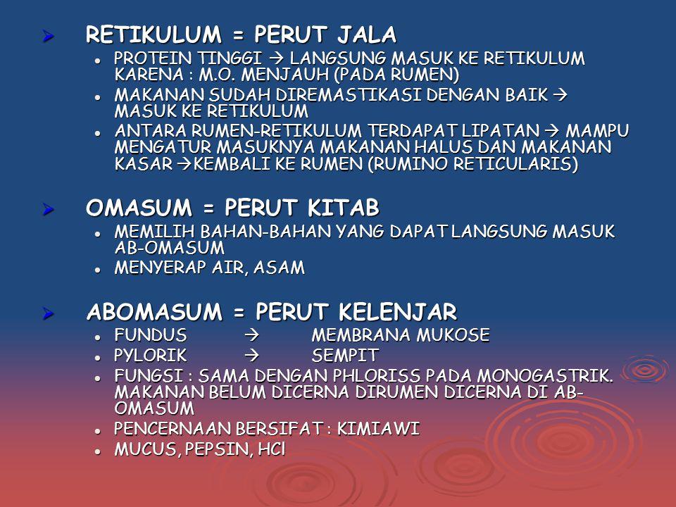  RETIKULUM = PERUT JALA PROTEIN TINGGI  LANGSUNG MASUK KE RETIKULUM KARENA : M.O.