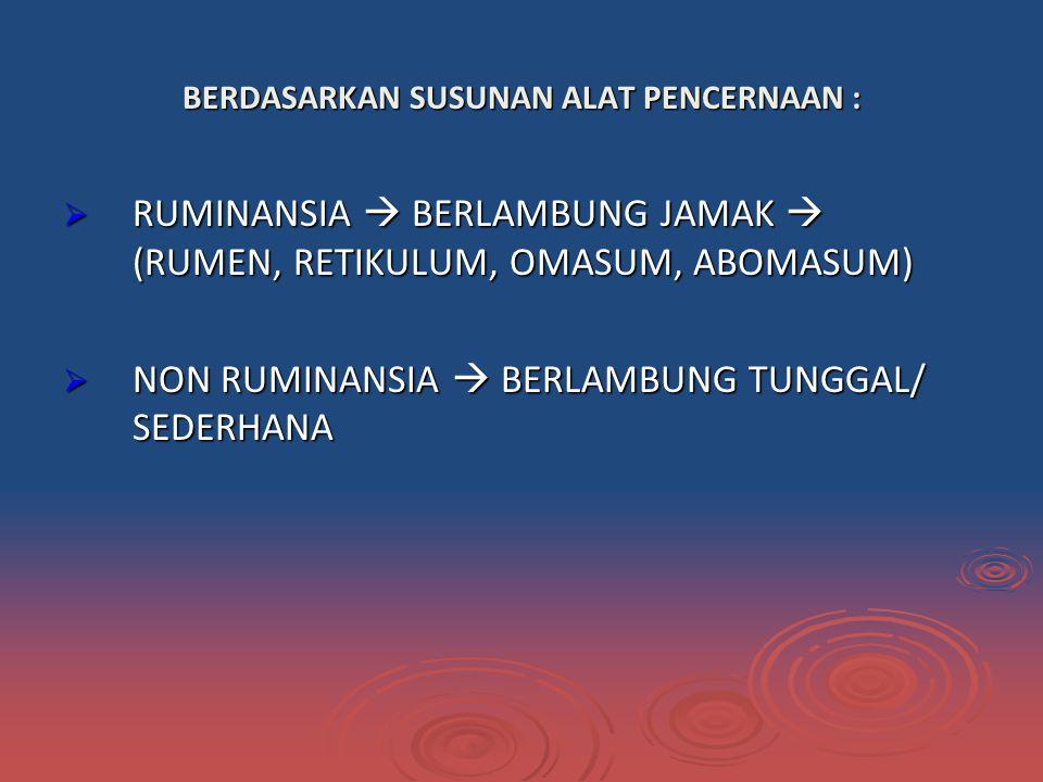 BERDASARKAN SUSUNAN ALAT PENCERNAAN :  RUMINANSIA  BERLAMBUNG JAMAK  (RUMEN, RETIKULUM, OMASUM, ABOMASUM)  NON RUMINANSIA  BERLAMBUNG TUNGGAL/ SEDERHANA
