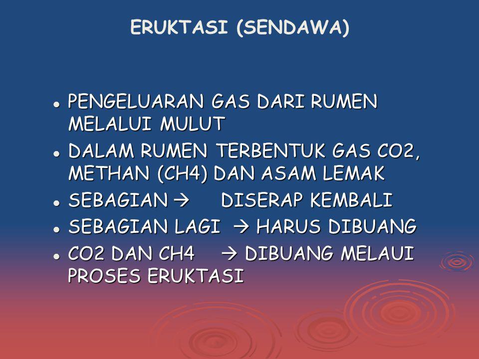 ERUKTASI (SENDAWA) PENGELUARAN GAS DARI RUMEN MELALUI MULUT PENGELUARAN GAS DARI RUMEN MELALUI MULUT DALAM RUMEN TERBENTUK GAS CO2, METHAN (CH4) DAN ASAM LEMAK DALAM RUMEN TERBENTUK GAS CO2, METHAN (CH4) DAN ASAM LEMAK SEBAGIAN  DISERAP KEMBALI SEBAGIAN  DISERAP KEMBALI SEBAGIAN LAGI  HARUS DIBUANG SEBAGIAN LAGI  HARUS DIBUANG CO2 DAN CH4  DIBUANG MELAUI PROSES ERUKTASI CO2 DAN CH4  DIBUANG MELAUI PROSES ERUKTASI