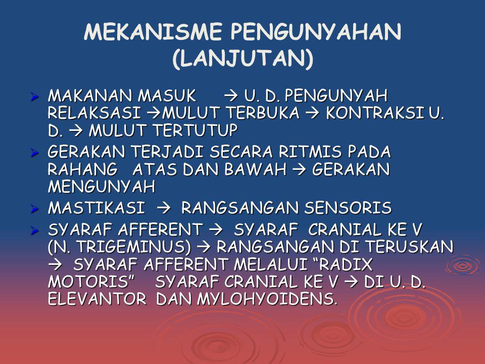 MEKANISME PENGUNYAHAN (LANJUTAN)  MAKANAN MASUK  U.