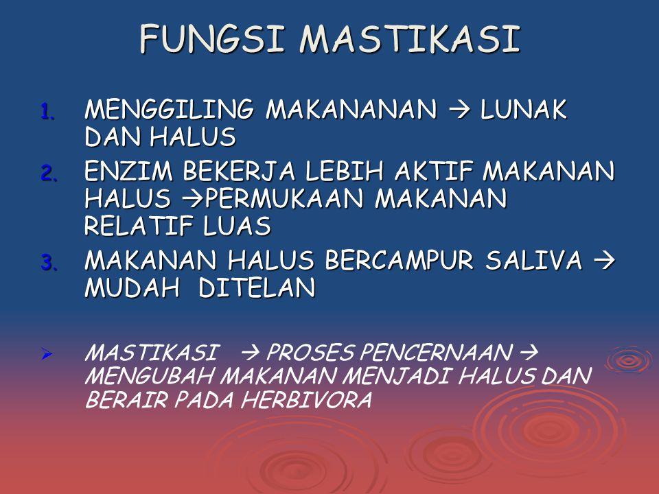1.MENGGILING MAKANANAN  LUNAK DAN HALUS 2.