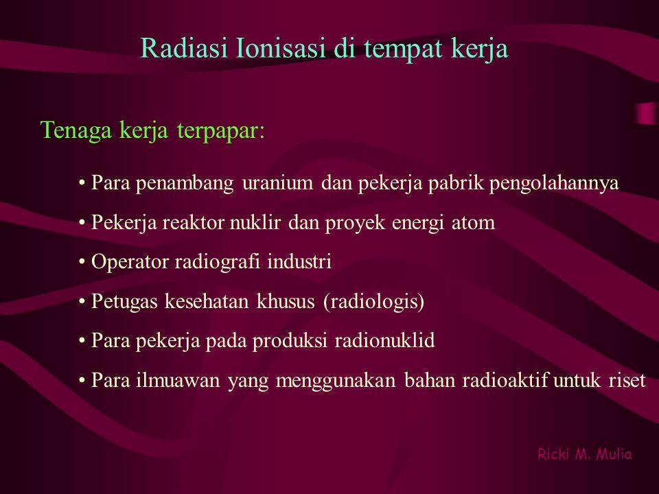 Sinar Infra Merah Ricki M.