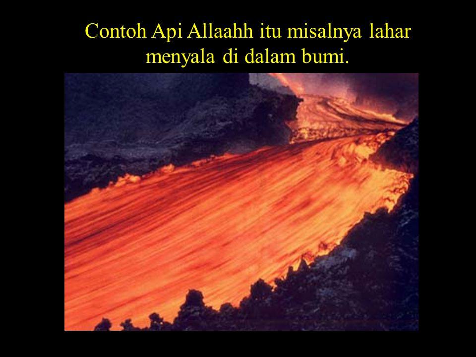 BACA Allatii tath-tholi-'u-'alal-af-idahh Yang sampai atas fuad-fuad Kalau anda memahami Fuad=hati, ya hati.