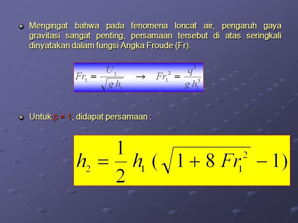 Mengingat bahwa pada fenomena loncat air, pengaruh gaya gravitasi sangat penting, persamaan tersebut di atas seringkali dinyatakan dalam fungsi Angka