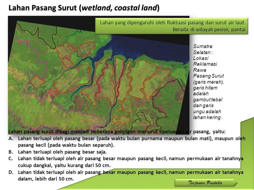 Lahan Pasang Surut (wetland, coastal land) Sumatra Selatan : Lokasi Reklamasi Rawa Pasang Surut (garis merah), garis hitam adalah gambut tebal dan gar