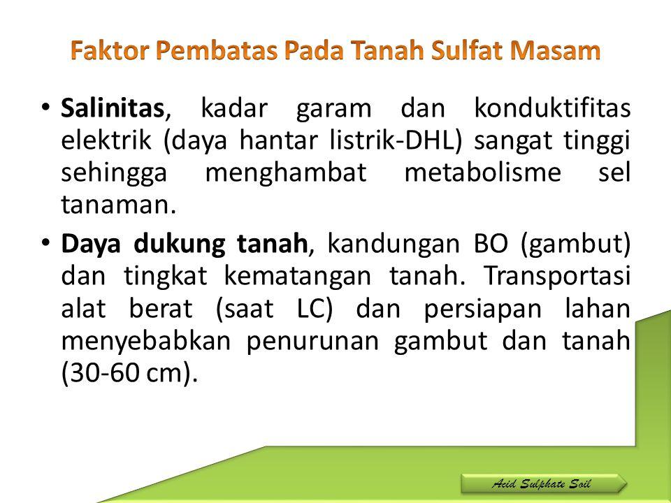 Salinitas, kadar garam dan konduktifitas elektrik (daya hantar listrik-DHL) sangat tinggi sehingga menghambat metabolisme sel tanaman. Daya dukung tan