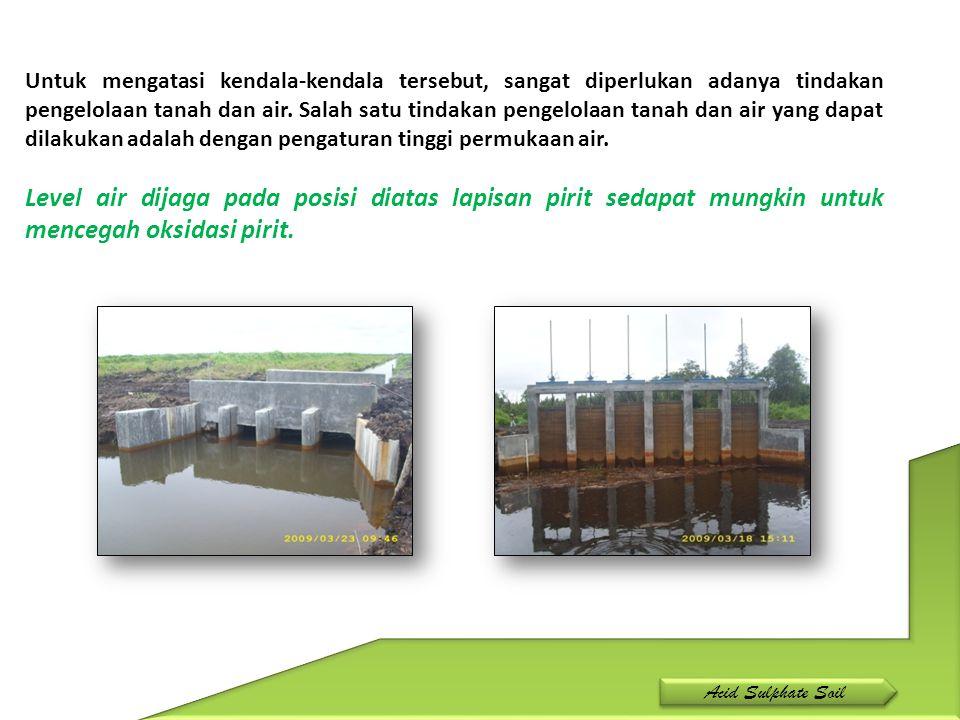 Untuk mengatasi kendala-kendala tersebut, sangat diperlukan adanya tindakan pengelolaan tanah dan air. Salah satu tindakan pengelolaan tanah dan air y