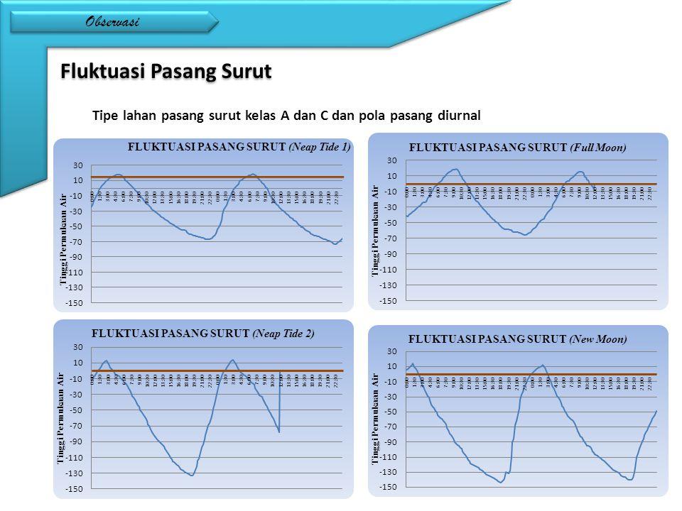 Observasi Fluktuasi Pasang Surut Tipe lahan pasang surut kelas A dan C dan pola pasang diurnal
