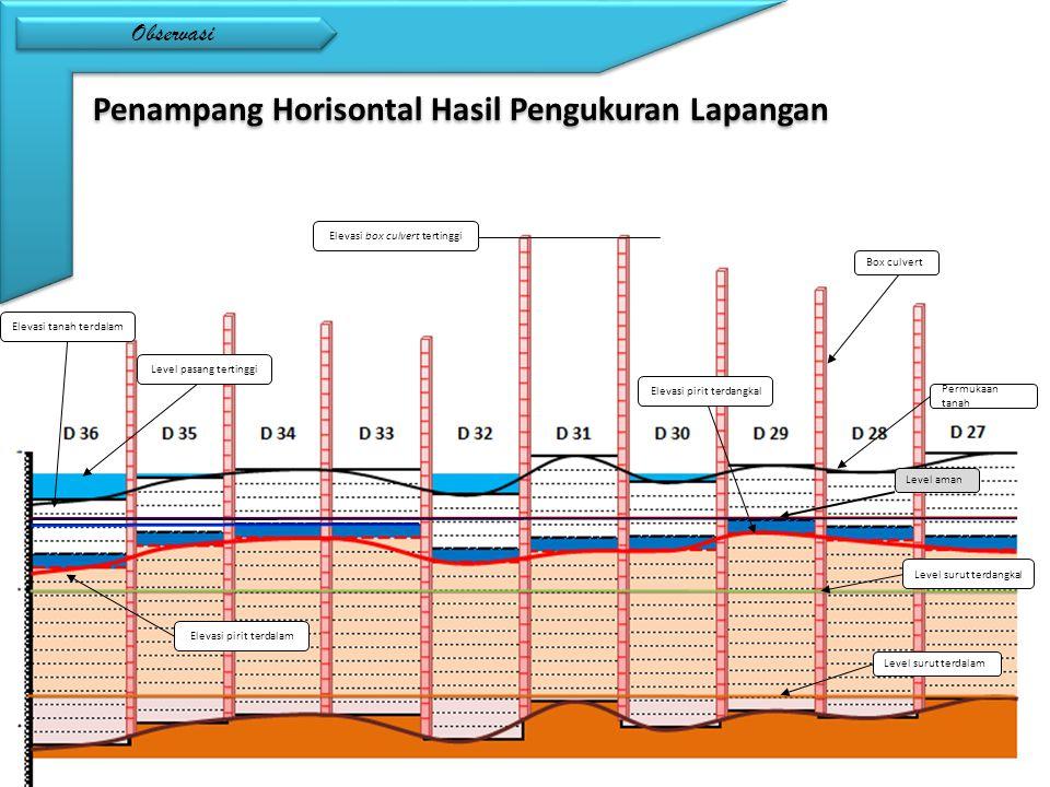 Observasi Penampang Horisontal Hasil Pengukuran Lapangan Level surut terdalam Level surut terdangkal Permukaan tanah Elevasi pirit terdangkal Elevasi