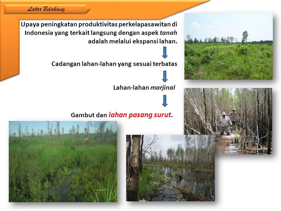 Upaya peningkatan produktivitas perkelapasawitan di Indonesia yang terkait langsung dengan aspek tanah adalah melalui ekspansi lahan. Lahan-lahan marj