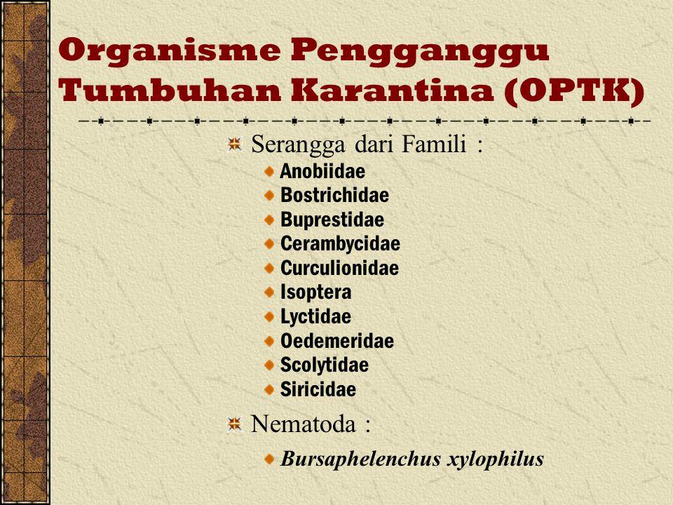 Organisme Pengganggu Tumbuhan Karantina (OPTK) Serangga dari Famili : Anobiidae Bostrichidae Buprestidae Cerambycidae Curculionidae Isoptera Lyctidae