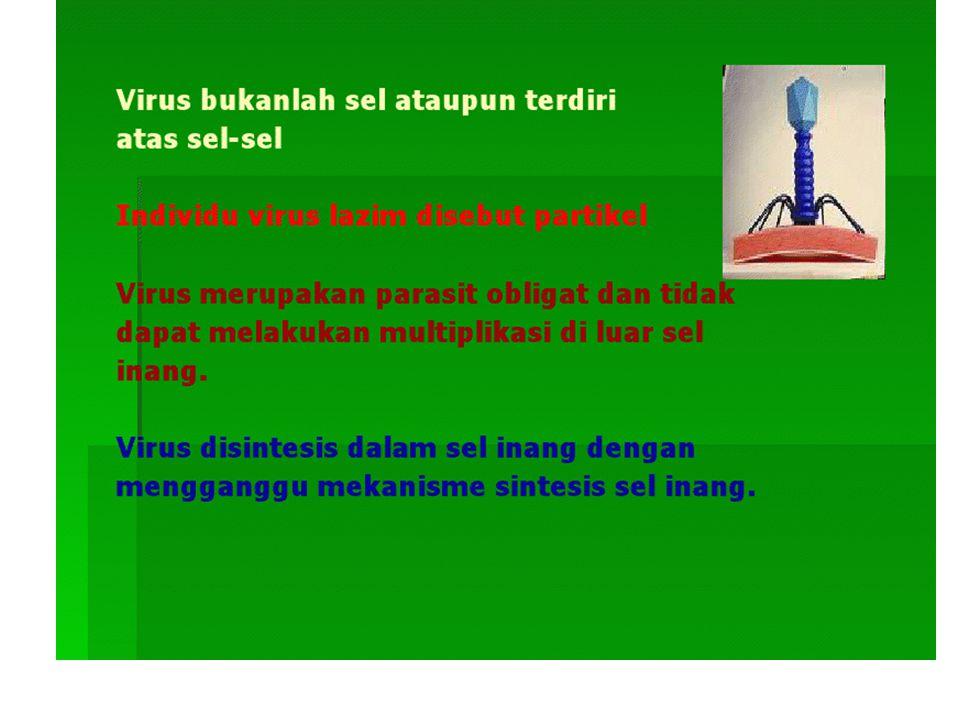 VIRUS RNA