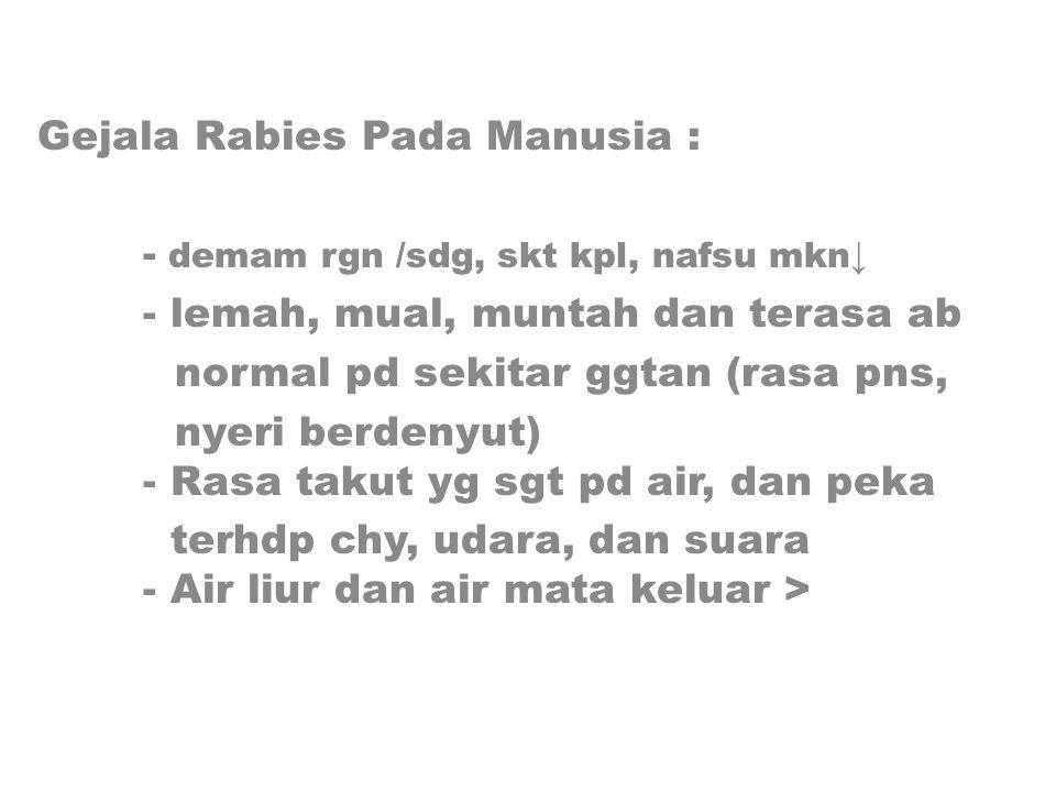 Gejala Rabies Pada Manusia : - demam rgn /sdg, skt kpl, nafsu mkn↓ - lemah, mual, muntah dan terasa ab normal pd sekitar ggtan (rasa pns, nyeri berdenyut) - Rasa takut yg sgt pd air, dan peka terhdp chy, udara, dan suara - Air liur dan air mata keluar >