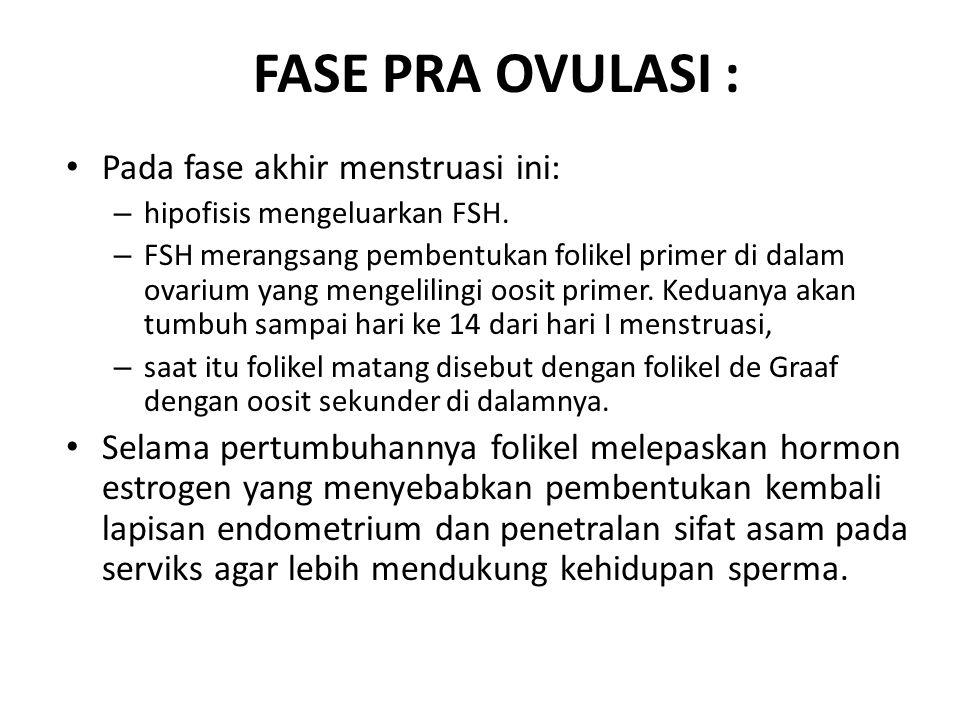 FASE PRA OVULASI : Pada fase akhir menstruasi ini: – hipofisis mengeluarkan FSH.
