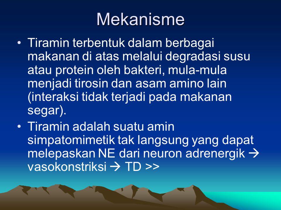 Mekanisme Tiramin terbentuk dalam berbagai makanan di atas melalui degradasi susu atau protein oleh bakteri, mula-mula menjadi tirosin dan asam amino