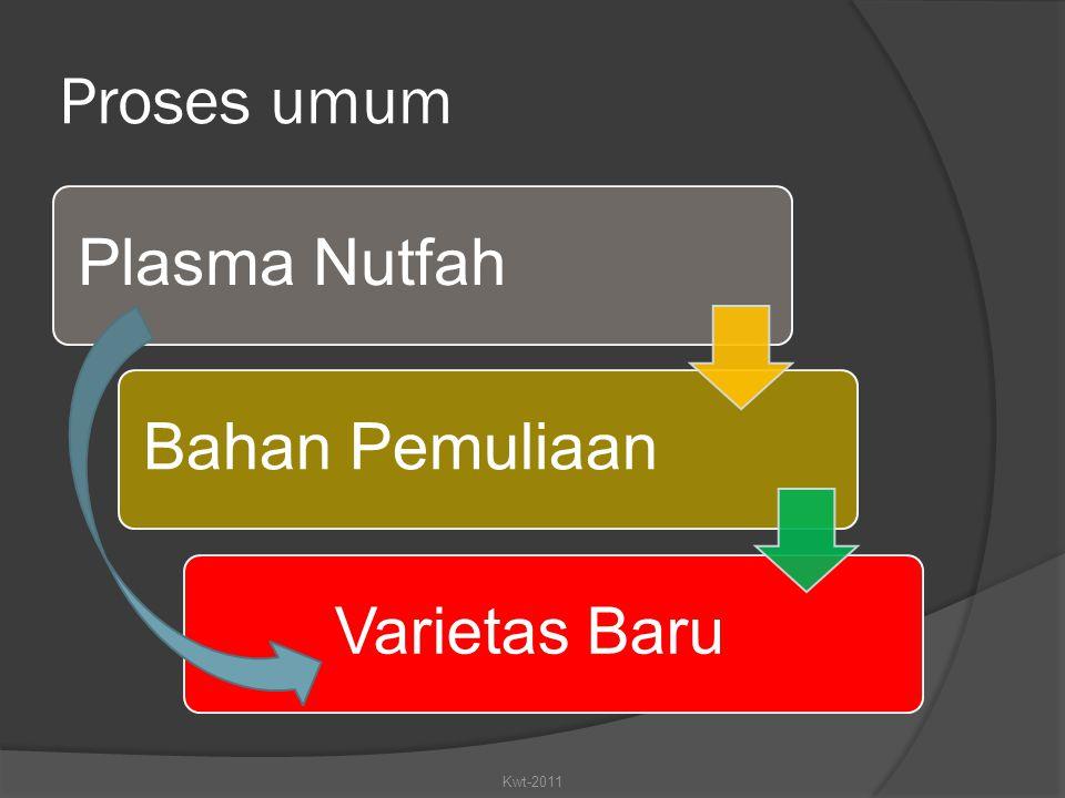 Proses umum Plasma NutfahBahan Pemuliaan Varietas Baru Kwt-2011