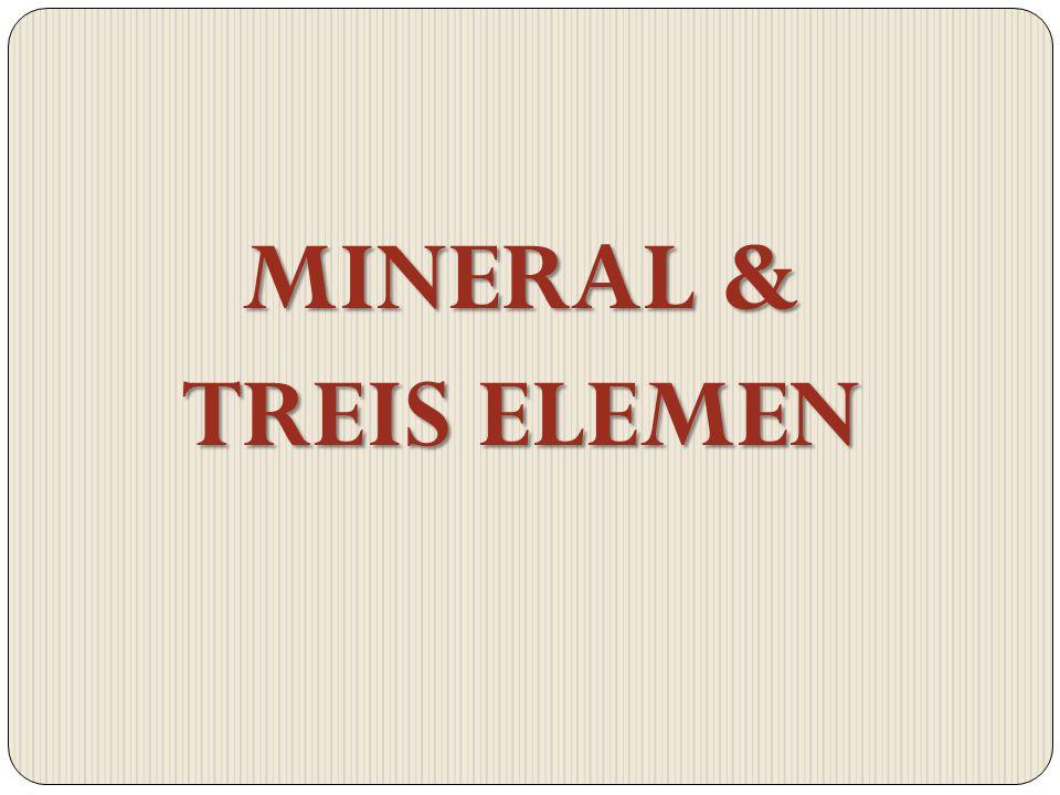 MINERAL & TREIS ELEMEN