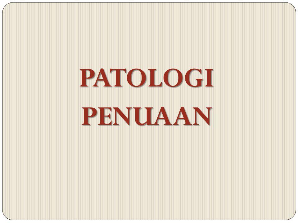 PATOLOGIPENUAAN
