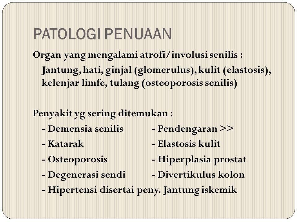 PATOLOGI PENUAAN Organ yang mengalami atrofi/involusi senilis : Jantung, hati, ginjal (glomerulus), kulit (elastosis), kelenjar limfe, tulang (osteopo