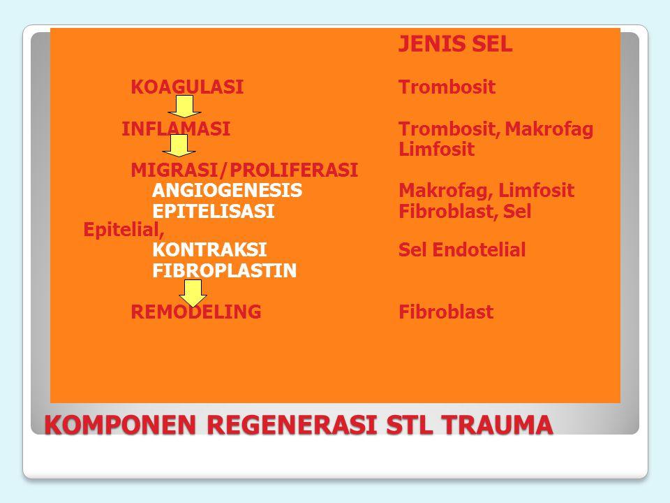 KOMPONEN REGENERASI STL TRAUMA JENIS SEL KOAGULASITrombosit INFLAMASITrombosit, Makrofag Limfosit MIGRASI/PROLIFERASI ANGIOGENESISMakrofag, Limfosit E