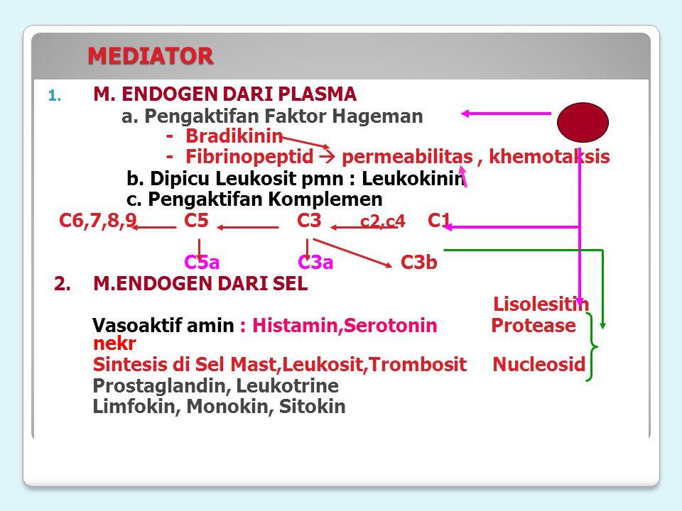 MEDIATOR MEDIATOR 1. M. ENDOGEN DARI PLASMA a. Pengaktifan Faktor Hageman - Bradikinin - Fibrinopeptid  permeabilitas, khemotaksis b. Dipicu Leukosit