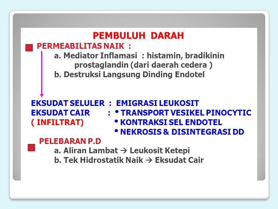 PEMBULUH DARAH PERMEABILITAS NAIK : a. Mediator Inflamasi : histamin, bradikinin prostaglandin (dari daerah cedera ) b. Destruksi Langsung Dinding End