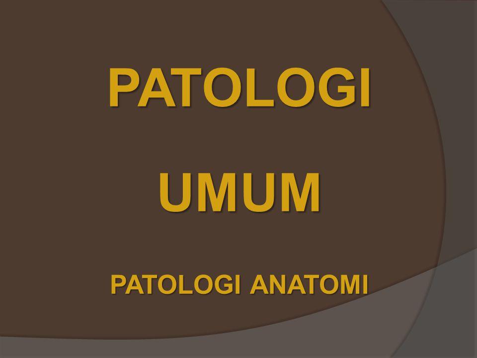 PATOLOGIUMUM PATOLOGI ANATOMI