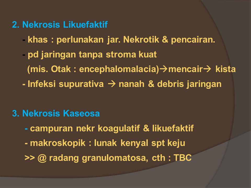 2.Nekrosis Likuefaktif - khas : perlunakan jar. Nekrotik & pencairan.