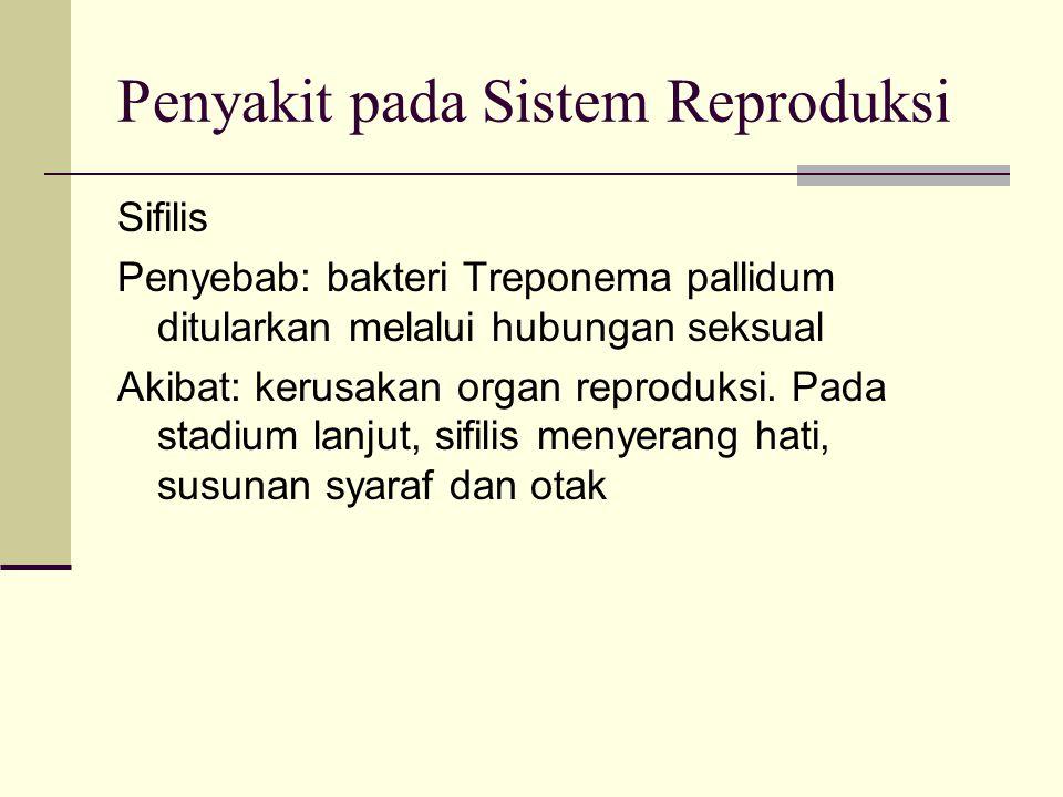 Penyakit pada Sistem Reproduksi Sifilis Penyebab: bakteri Treponema pallidum ditularkan melalui hubungan seksual Akibat: kerusakan organ reproduksi.