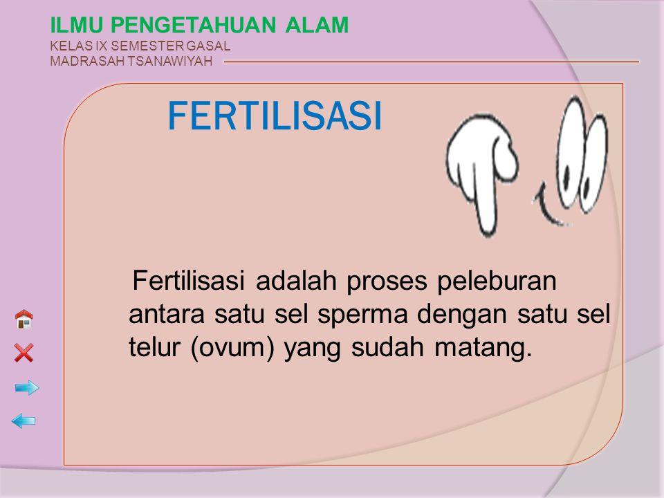 ILMU PENGETAHUAN ALAM KELAS IX SEMESTER GASAL MADRASAH TSANAWIYAH Fertilisasi adalah proses peleburan antara satu sel sperma dengan satu sel telur (ov