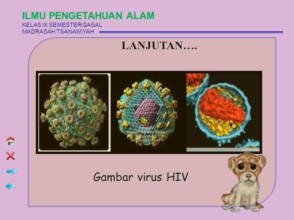 LANJUTAN…. Gambar virus HIV ILMU PENGETAHUAN ALAM KELAS IX SEMESTER GASAL MADRASAH TSANAWIYAH