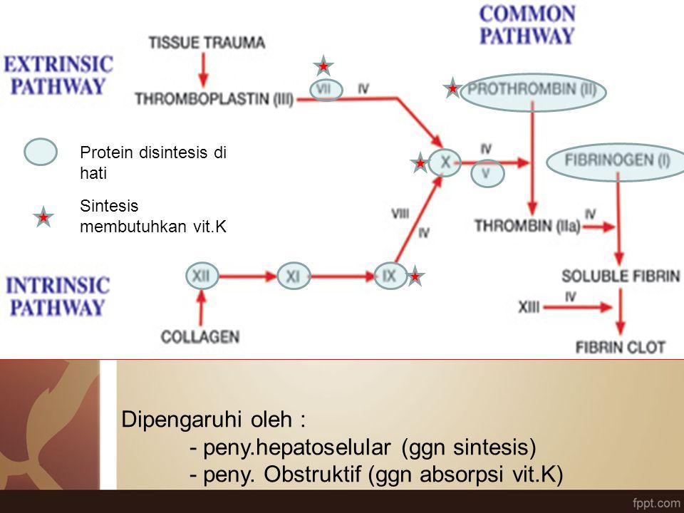 Dipengaruhi oleh : - peny.hepatoselular (ggn sintesis) - peny. Obstruktif (ggn absorpsi vit.K) Protein disintesis di hati Sintesis membutuhkan vit.K