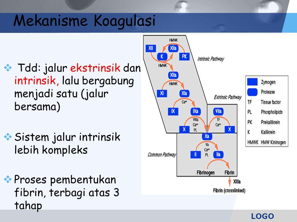 LOGO  Tdd: jalur ekstrinsik dan intrinsik, lalu bergabung menjadi satu (jalur bersama)  Sistem jalur intrinsik lebih kompleks  Proses pembentukan f