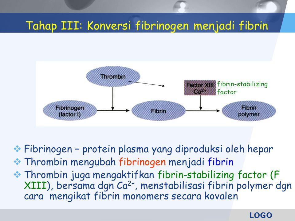 LOGO Tahap III: Konversi fibrinogen menjadi fibrin  Fibrinogen – protein plasma yang diproduksi oleh hepar  Thrombin mengubah fibrinogen menjadi fib