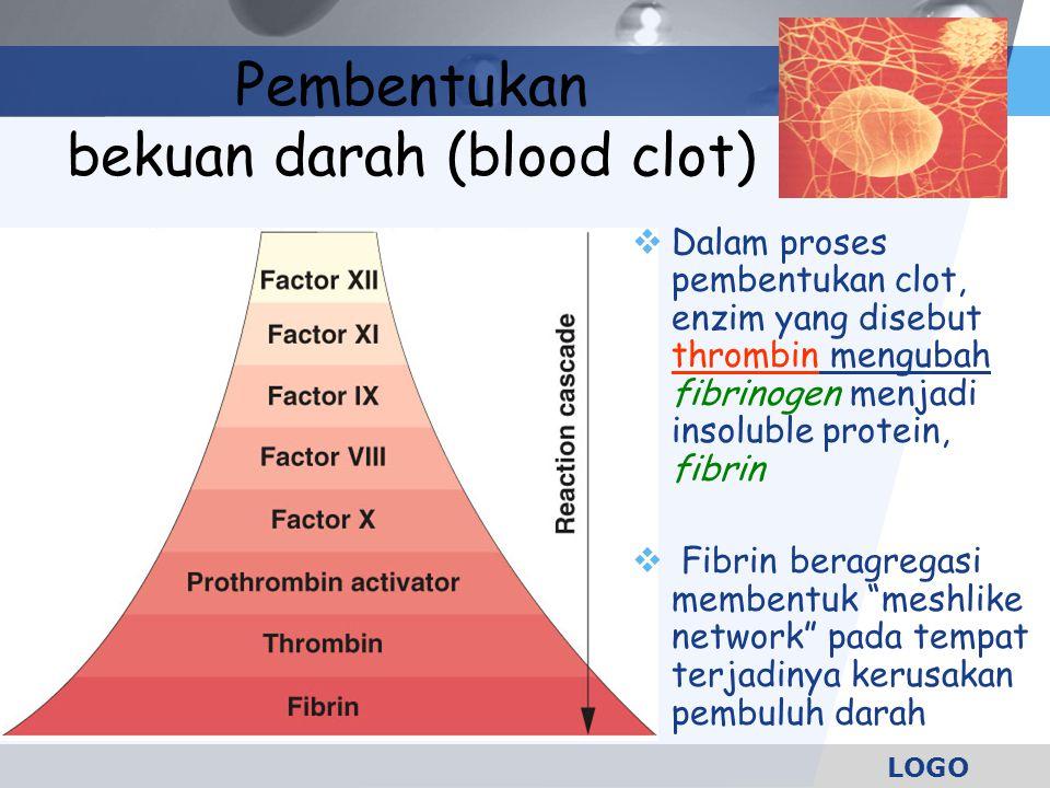 LOGO Pembentukan bekuan darah (blood clot)  Dalam proses pembentukan clot, enzim yang disebut thrombin mengubah fibrinogen menjadi insoluble protein,