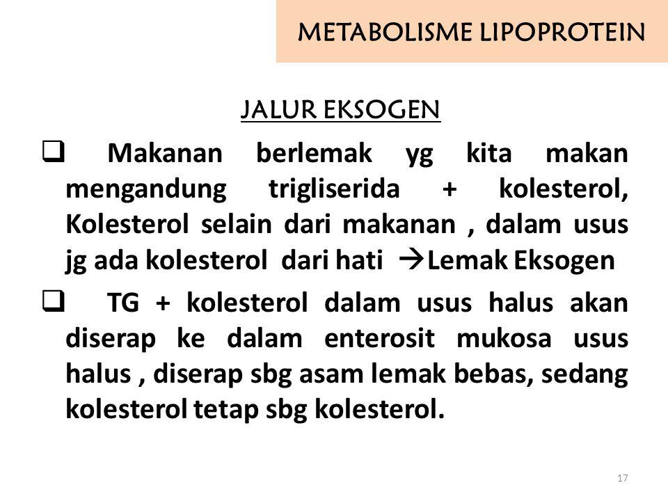 METABOLISME LIPOPROTEIN JALUR EKSOGEN  Makanan berlemak yg kita makan mengandung trigliserida + kolesterol, Kolesterol selain dari makanan, dalam usu