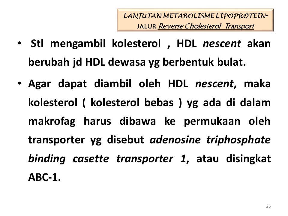 Stl mengambil kolesterol, HDL nescent akan berubah jd HDL dewasa yg berbentuk bulat. Agar dapat diambil oleh HDL nescent, maka kolesterol ( kolesterol