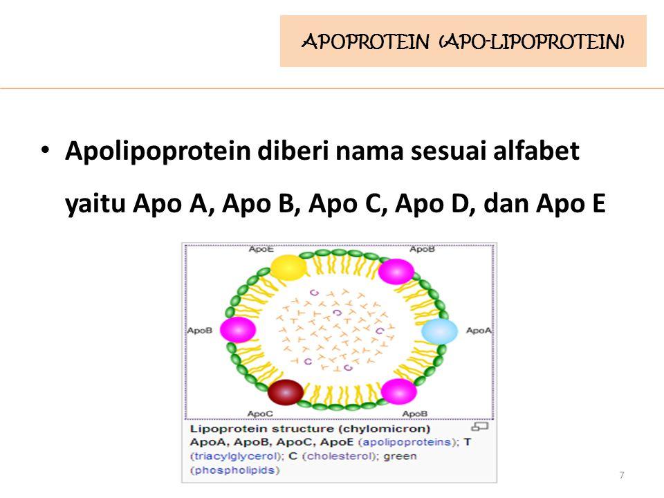 Apolipoprotein diberi nama sesuai alfabet yaitu Apo A, Apo B, Apo C, Apo D, dan Apo E 7 APOPROTEIN (APO-LIPOPROTEIN)